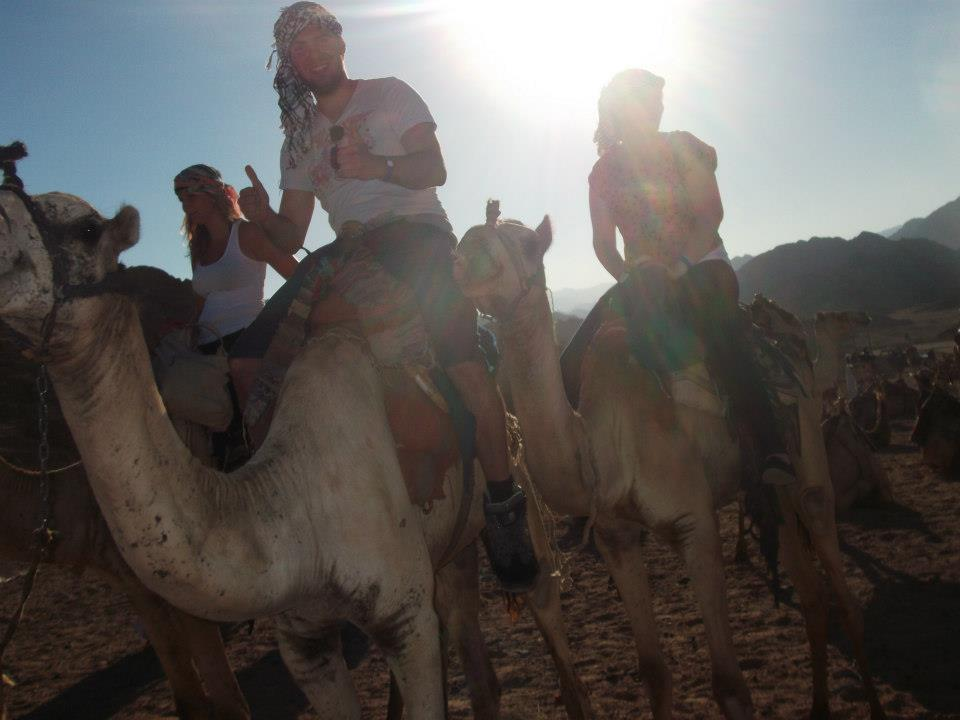 Camel riding in Sharm El Sheikh