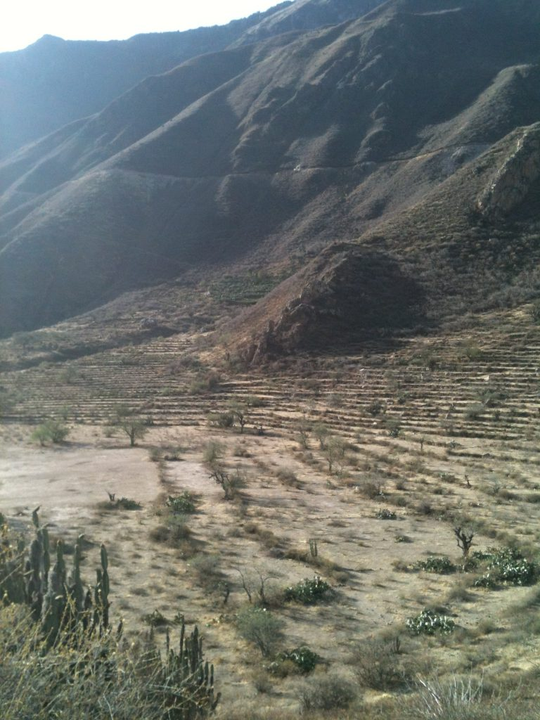 colca canyon walking
