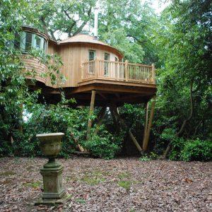 The Harptree Treehouse