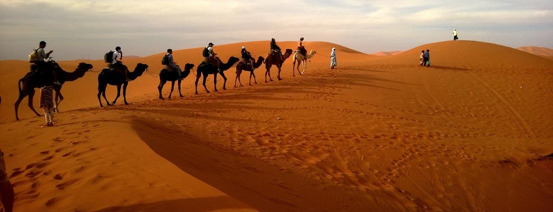 gran-canaria-camel-riding