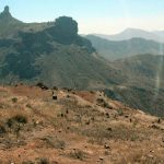 12 Things To Do In Gran Canaria