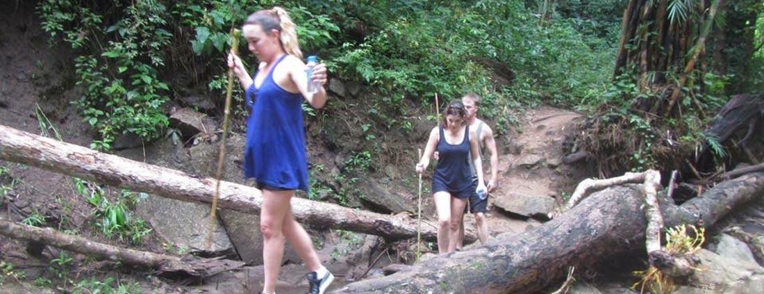 log-trekking